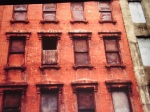Photo by Bella Opacic